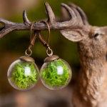 Real Moss Earrings by SomeMagic